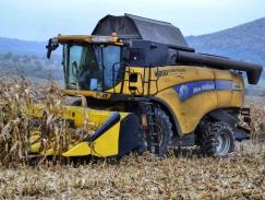 Sklizeň kukuřice v podání mlátičky New Holland!
